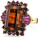 Incredible 12.53 carat  Brown Dravite Tourmaline Gemstone Ring With Garnet & Ruby Frame - 14kt Yellow Gold - SOLD