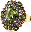 Andrew Sarosi Themed 14kt Yellow Gold Multi Gemstone Ring With 11 carat Oval Green Chrysoberyl Center Surrounded By Tourmaline, Iolite & Andalusite
