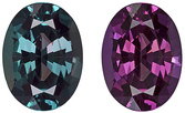 Gubelin Certified Vivid Rich Alexandrite Loose Gem in Oval Cut, Excellent Clarity, 8.2 x 6.1 mm, 1.47 carats