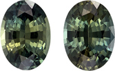 Blue Green Sapphires Pair in Oval Cut, Rich Blue Green, 6.8 x 5 mm, 1.77 carats- SOLD