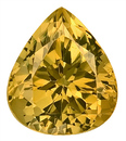 Incredible Unheated Genuine Yellow Grossular Garnet Gem Great Find! Pear Shape, 12.1 x 10.4 mm, 6.69 carats