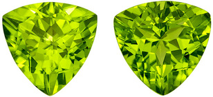 Stunning Matched Peridots in Trillion Cut, Vivid Open Green, 10 mm, 6.75 carats