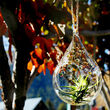 Hand-Blown Glass Solar Garden Lights