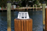 8 Inch Solar Piling Light for Salt and Fresh Water Rated Docks