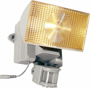 30-Watt Halogen Solar Security Light