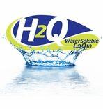 H2Q CoQ10