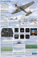 Basics of Flight Aviation Poster - Laminated