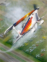 Christen Eagle Airplane Art Print - Limited Edition