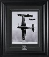 P-40 Warhawk Airplane Collectible Skin Relic