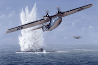 PBY Catalina Airplane Print