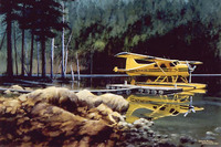 DHC-2 Beaver Airplane Art Print