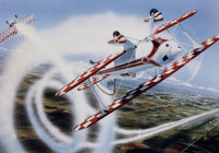 Pitts Special Airplane Art Print