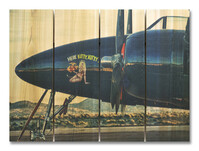 F7F Tigercat Indoor Outdoor Art - Medium