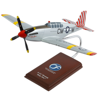"P-51 Mustang ""Betty Jane"" Model"