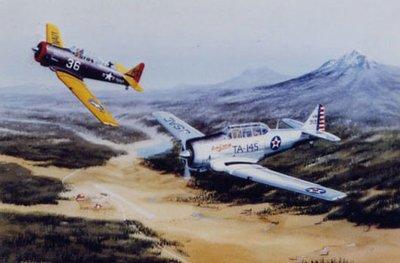 AT-6 & SNJ Texan Airplane Print