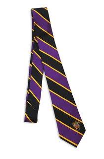 Delta Sigma Pi Tie