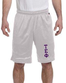 Tau Epsilon Phi Mesh Short