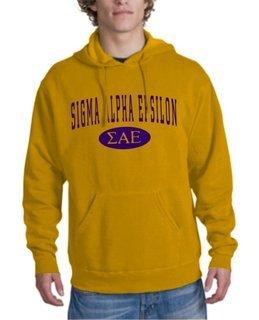 Sigma Alpha Epsilon arch Hoodie