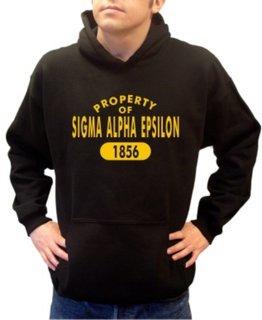 Sigma Alpha Epsilon Property of Established