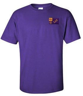 CLOSEOUT - Sigma Alpha Epsilon Flag Patch T-Shirt
