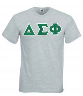 DISCOUNT- Delta Sigma Phi Lettered V-Neck T-Shirt
