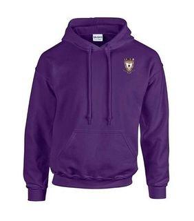 DISCOUNT-Sigma Alpha Mu Crest - Shield Emblem Hooded Sweatshirt