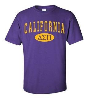 Delta Sigma Pi State Shirt