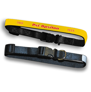 Psi Upsilon Pet Collar