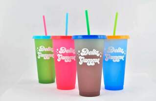Delta Gamma Color Changing Cups (Set of 4)