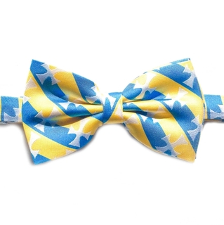 Sigma Chi Flag Bow Tie