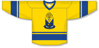Alpha Epsilon Pi League Hockey Jersey