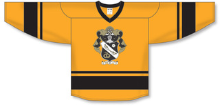 Sigma Nu League Hockey Jersey