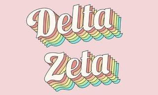 Delta Zeta Sorority Retro Flag