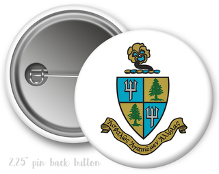 Delta Delta Delta Color Crest - Shield Button