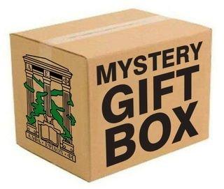 Alpha Epsilon Phi Mystery Box - Gift Edition