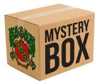 Alpha Gamma Delta Surprise Box