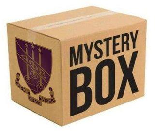 Delta Phi Epsilon Surprise Box