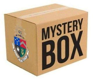 Delta Tau Delta Surprise Box