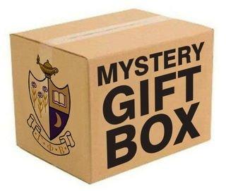 Gamma Phi Beta Mystery Box - Gift Edition