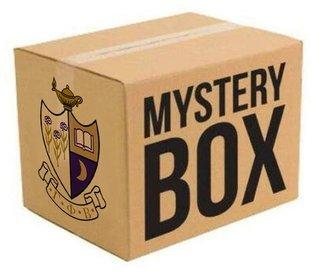 Gamma Phi Beta Surprise Box