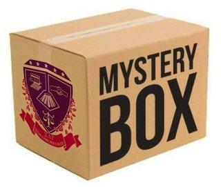 Sigma Lambda Gamma Surprise Box
