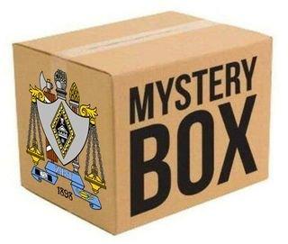 Zeta Beta Tau Surprise Box