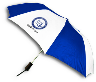 Zeta Phi Beta Since 1920 Umbrella