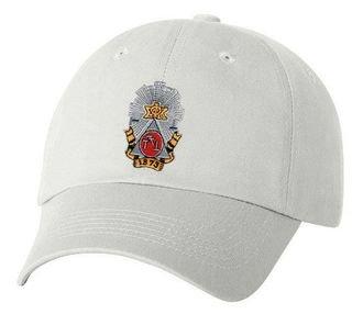 DISCOUNT-Phi Sigma Kappa Crest Hat - SUPER SALE