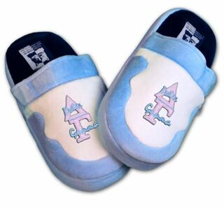 DISCOUNT-Delta Gamma Slippers