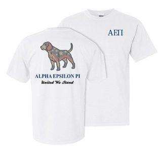 Alpha Epsilon Pi United We Stand Comfort Colors T-Shirt