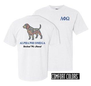Alpha Phi Omega United We Stand Comfort Colors T-Shirt