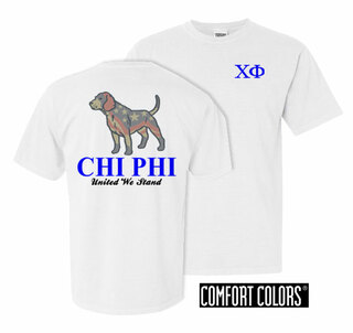 Chi Phi United We Stand Comfort Colors T-Shirt