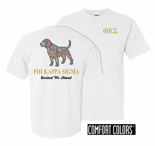 Phi Kappa Sigma United We Stand Comfort Colors T-Shirt