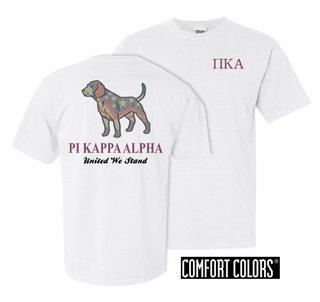 Pi Kappa Alpha United We Stand Comfort Colors T-Shirt